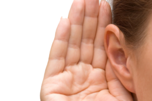 eight col ear PNG35705 1